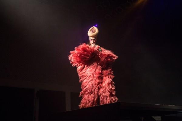 Peaches_W-Festival_2017-081